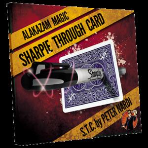 Sharpie through card by Peter Nardi