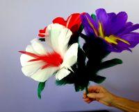 Blumenbukett 5 Blüten