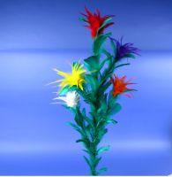 Stockblume, 5 Blüten