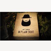 In Plain Sight by Matt Johnson