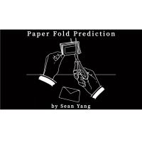 Paper Fold Prediction by Sean Young