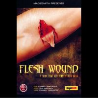 Flesh Wound by Magic Smith