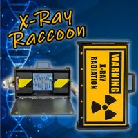 X-Ray Raccon by Climax