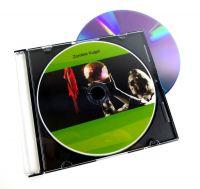 DVD Zombie-Kugel - Losander
