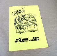Bauplan Sägeillusion 2000
