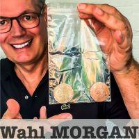 Wahl Morgan by Fokx Magic