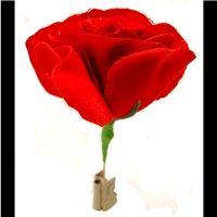 Match to Flower