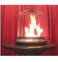 Feuer - Taubenkäfig