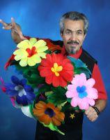 Stock zu Riesenblume (16 Blüten)