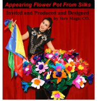 One Appearing Flower Pot from Silk