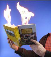 Feuerbuch 'PRO'