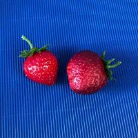 Erdbeeren, 2 Stück