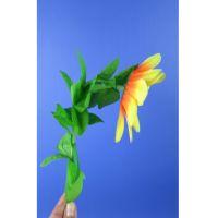 Verbeugende Blume - Sonnenblume